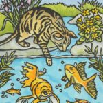 Cat pawing at fish in a pond