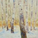 Forest of birches in the snow