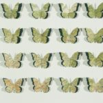 4 rows of 4 identical butterflies