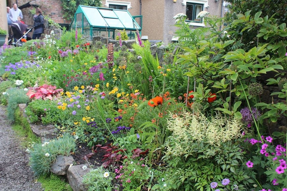 attractive garden bed with mixed coloured flowers
