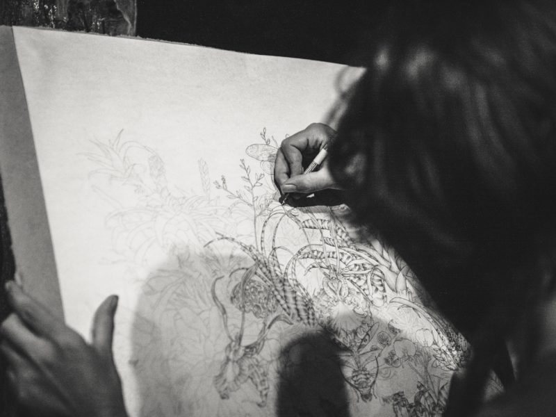 Drawing at the Williamson