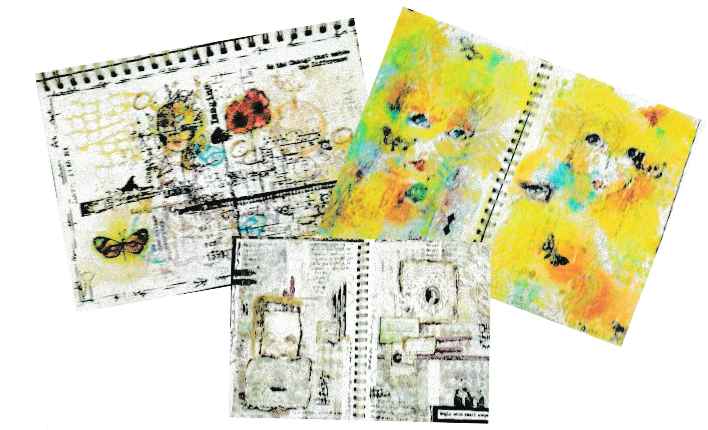 Three journals of images