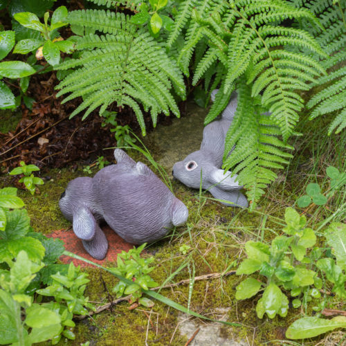 stone rabbits sideways on grass